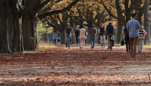 Walk, cycle or jog through a beautiful park