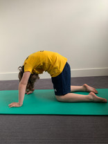 Cat pose - to mobilise the spine