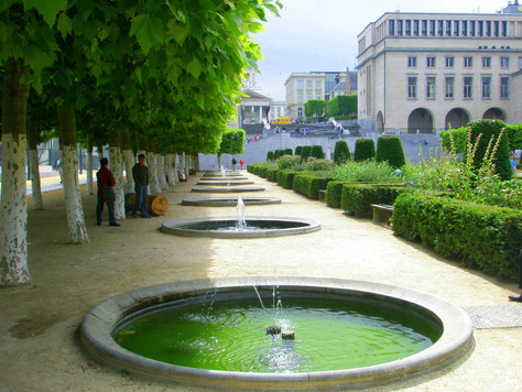 Brussels meadows and swamps PART 2 (How to visit Brussels in most interesting and exciting way! )