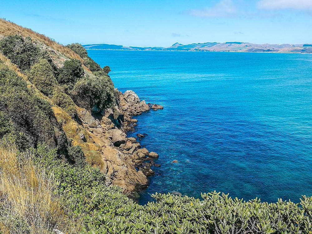 Katiki Point