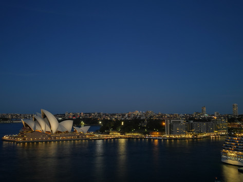 Sydney. Whale watching and Walking tour.