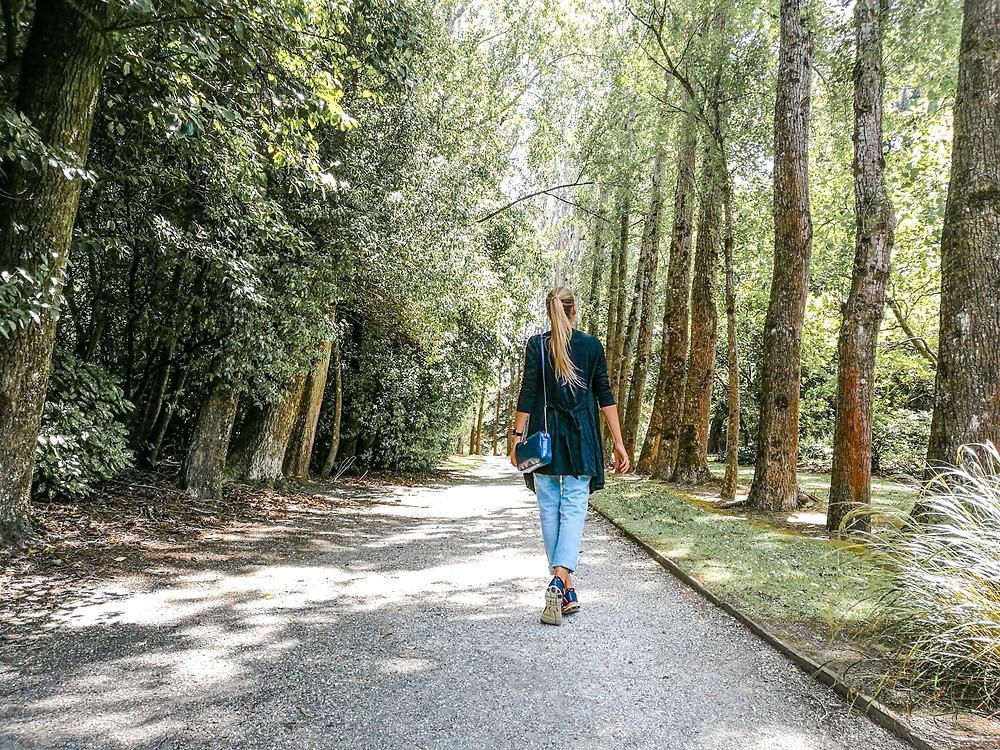 Invercargill Botanical Garden