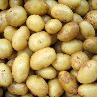 Imposterburger.potato.jpg