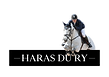 HARAS_DU_RY_2.png