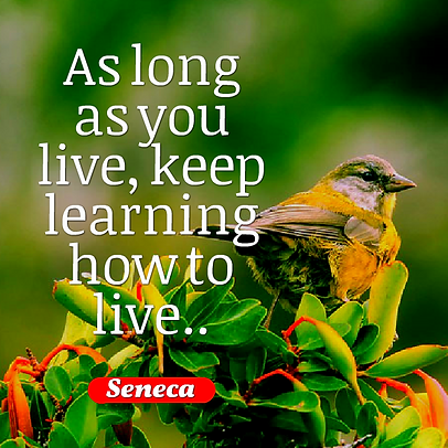 As long as you live, keep learning how t