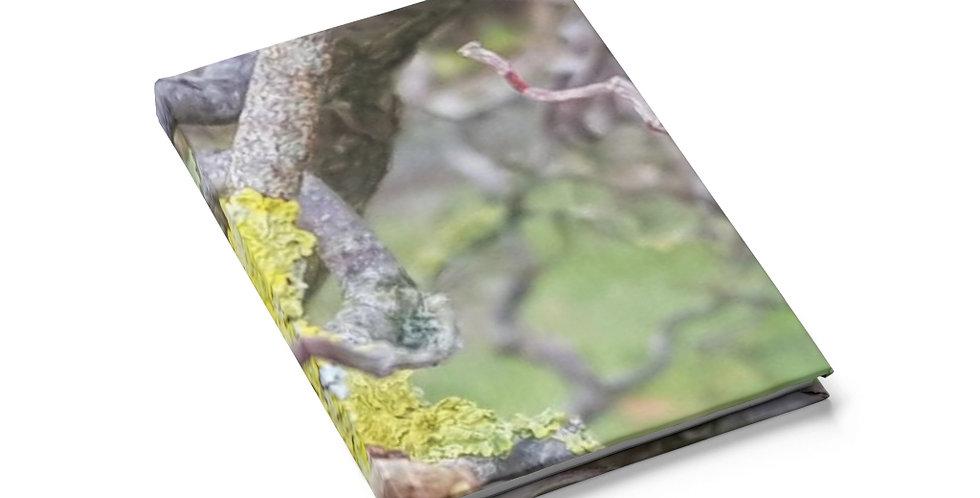 Journal Writing Notebook