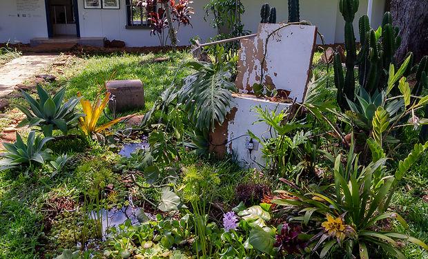 QuinaTombada-IsabelaCouto-0028.jpg