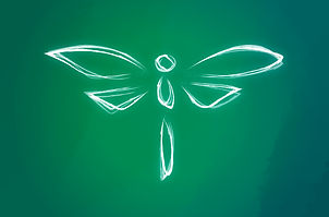 Banner_Dragonfly1.jpg