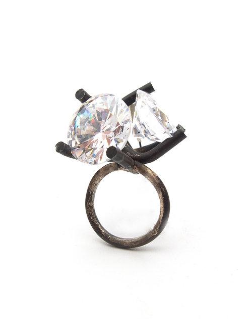 Ring by Adam Grinovich