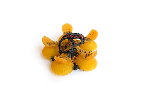 Brooch by Andrea Wagner