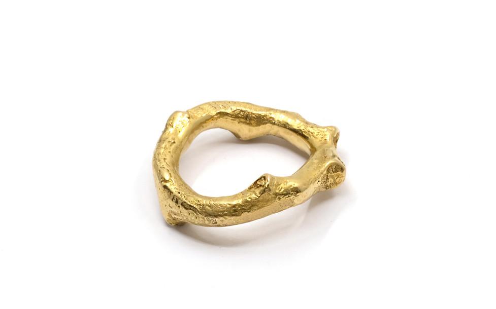 gold_branch.jpg