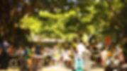 DDC_4.jpg