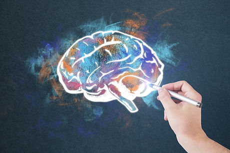 Hand drawing colorful brain sketch on co