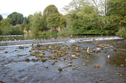 The River Wye, Bakewell
