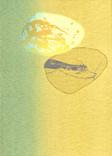シリーズ » Münchner Stein (ミュンヘン ノ 石) 2 « 2010、リトグラフ、手漉き紙、53 x 38 cm、ユニークプリント