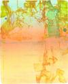» viel Reisen « 2009, Lithographie auf Büttenpapier, 76 x 57 cm, Aufl. 6