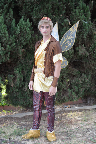 Dust Keeper Fairy