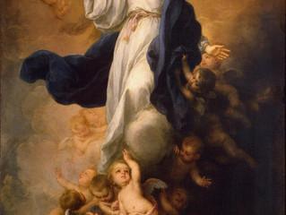Sermon: The Assumption of Mary