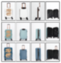 Gride_of_Luggage-01.png