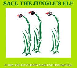 Saci, the jungle's elf