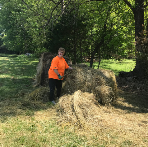 Donated hay to spread