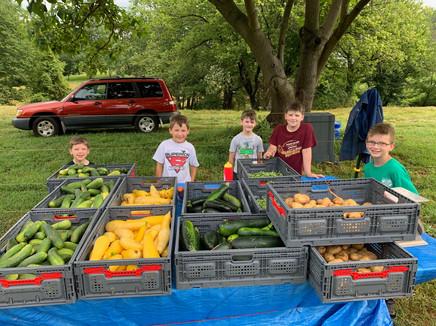 Boy Crew with harvest
