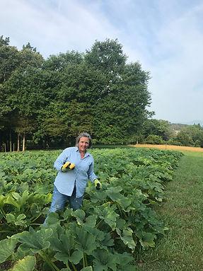 Trish harvesting.jpeg
