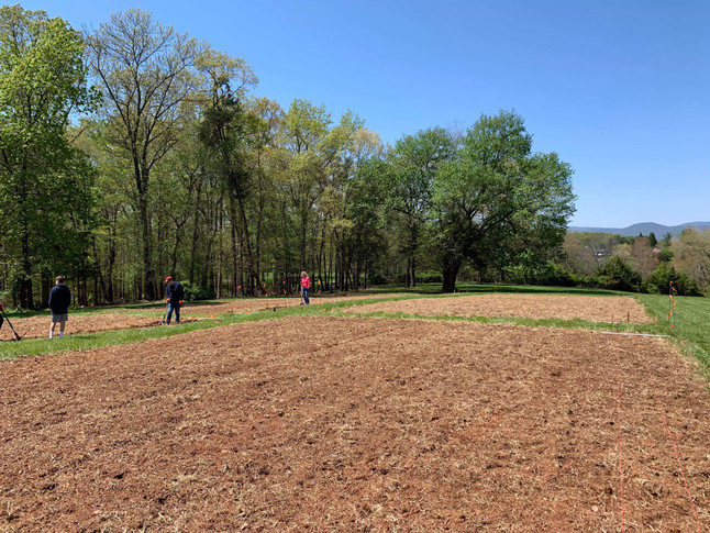 Freshly tilled garden plots