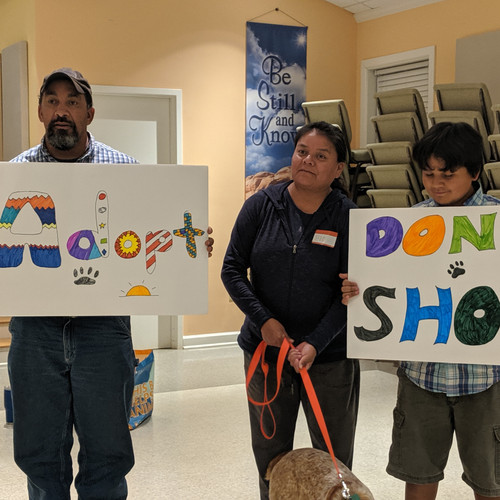 sessions Don't Shop, Adopt campaign with