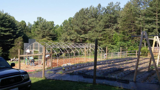 greenhouse structure.jpg