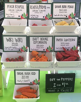 Super hot peppers displayed at the farmers market.
