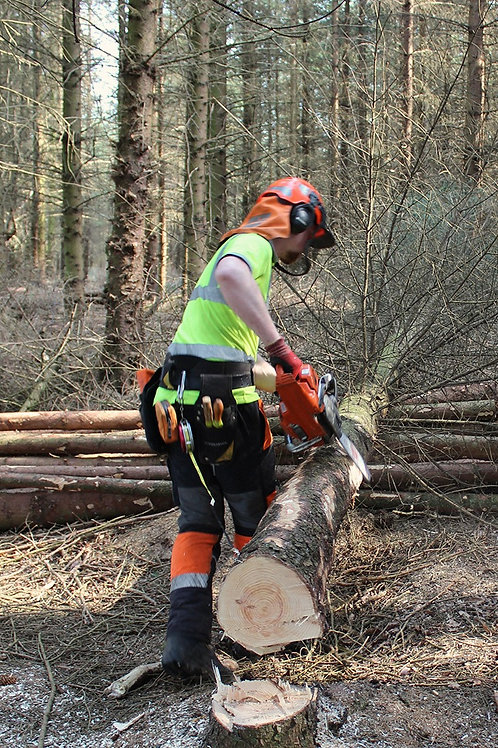 Emergency First Aid at Work - Forestry
