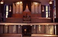 Organ01b.jpg