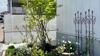 個人宅植栽
