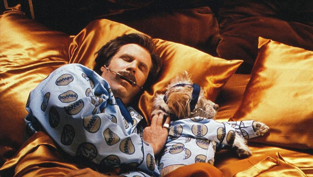 Anchorman sleeping in bed