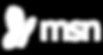 MSN-empresa-turismo-nova york.png