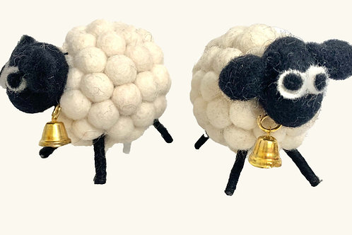 Bah Bah White Sheep