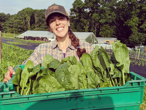 A Woman-owned Farm in the Neighborhood!