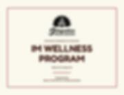 Wellness program.png