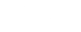 logo-wanny_2.png