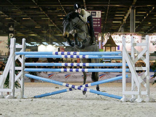 HORSE FEEL-EVENTING AUX JEM 2014 !!!