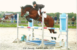Concours CSO Liverdy
