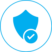 Secure Icon (1).png