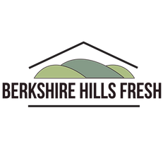 berkshire hills logo.png