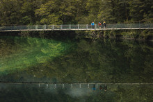 The 5 must-do's of Fiordland