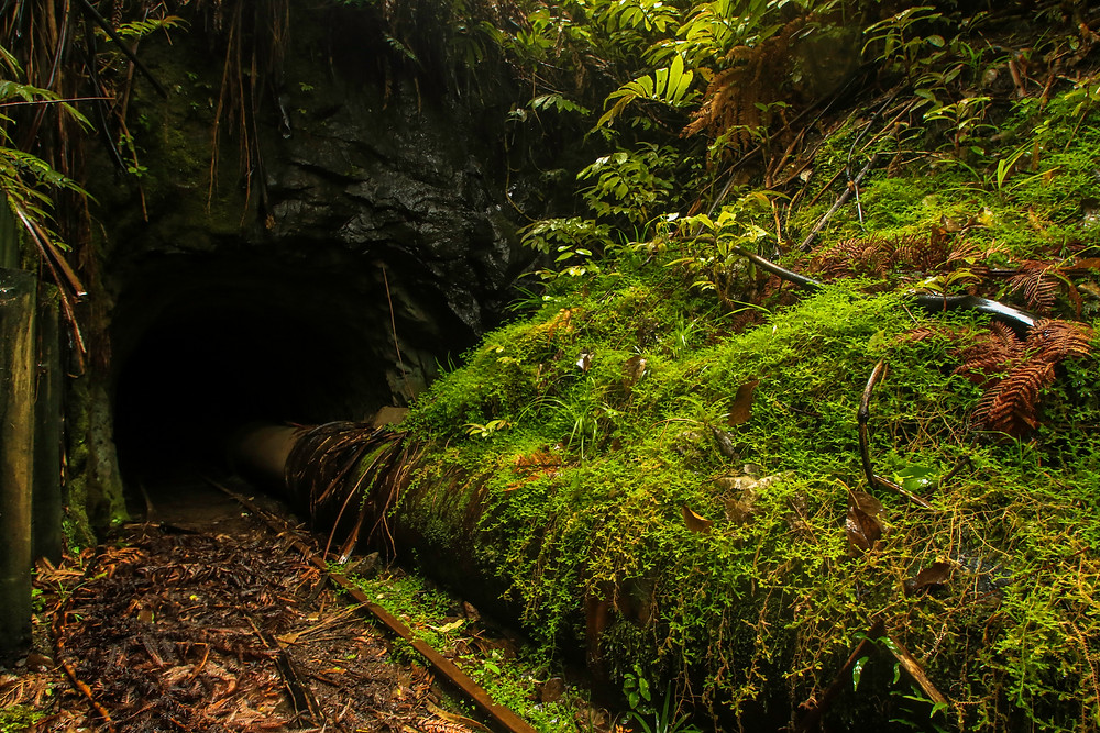 One of the 'eerie' tramline tunnels