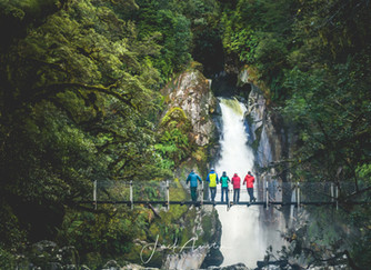 Walking the Great 9 - The Milford Track
