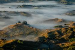 Misty Inland Whangarei
