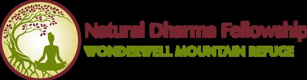 NDF WW logo horizonal colors.png
