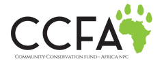 CCFA-Logo-Full-colour-768x288.png